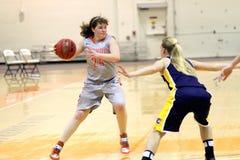 NCAA kobiet koszykówka Obraz Royalty Free