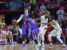 2015 NCAA koszykówka - CC$ECU Obraz Stock