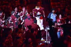 2015 NCAA koszykówka - CC$ECU Zdjęcie Stock