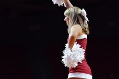 2015 NCAA koszykówka - Cincinnati Zdjęcie Stock