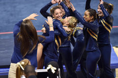 2015 NCAA Ladies Gymnastics - WVU Stock Image