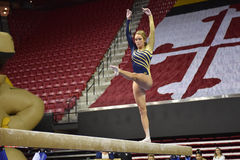 2015 NCAA Ladies Gymnastics - WVU Royalty Free Stock Photo