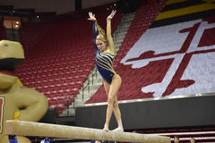 2015 NCAA Ladies Gymnastics - WVU Royalty Free Stock Image