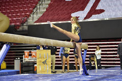 2015 NCAA Ladies Gymnastics - WVU Royalty Free Stock Photography