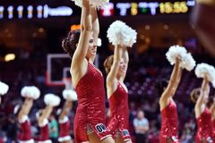 2015 NCAA Men's Basketball - Temple-Tulsa Stock Photography