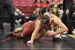 2015 NCAA-Ringkampf - Harvard @ Maryland Lizenzfreie Stockfotografie