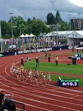 NCAA track and field championships Stock Image