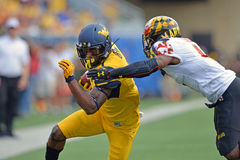 2015 NCAA Voetbal - Maryland @ WVU Stock Foto