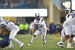 2014 NCAA Voetbal - tcu-WVU Stock Fotografie