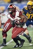2014 NCAA Voetbal - WVU-Oklahoma Royalty-vrije Stock Foto
