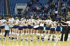 NCAA Volleyball 2014 - Baylor - WVU Stock Photos