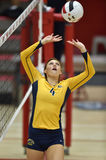 2015 NCAA Volleyball - Kent State en Morgan State Stock Foto's