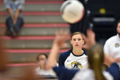 2015 NCAA Volleyball - Kent State en Morgan State Royalty-vrije Stock Afbeelding