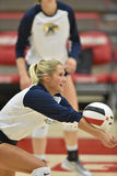 2015 NCAA Volleyball - Kent State en Morgan State Stock Afbeelding