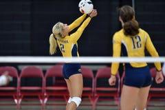 2015 NCAA Volleyball - Kent State en Morgan State Stock Afbeeldingen