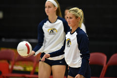 2015 NCAA Volleyball - Kent State and Morgan State Royalty Free Stock Photography