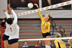 2015 NCAA Volleyball - Kent State and Morgan State Royalty Free Stock Photo