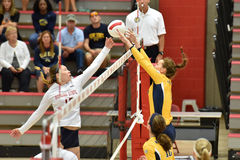 2015 NCAA Volleyball - Kent State and Morgan State Stock Images