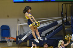 2015 NCAA-Volleyball - Texas @ West Virginia Lizenzfreie Stockfotos