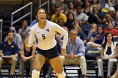 2015 NCAA-Volleyball - Texas @ West Virginia Lizenzfreie Stockbilder