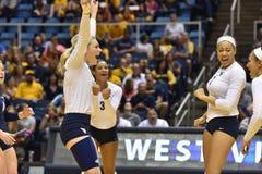 2015 NCAA-Volleyball - Texas @ West Virginia Lizenzfreie Stockfotografie