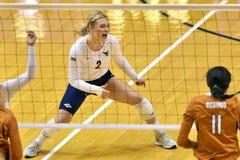 2015 NCAA-Volleyball - Texas @ West Virginia Lizenzfreies Stockfoto