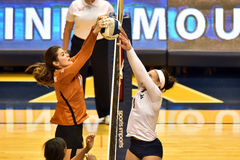 2015 NCAA-Volleyball - Texas @ West Virginia Lizenzfreie Stockfotografie