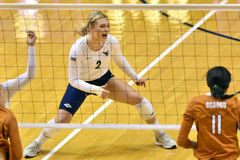2015 NCAA Volleyball - Texas @ West Virginia Royalty Free Stock Photo