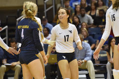 2015 NCAA-Volleyball - Texas @ WVU Lizenzfreie Stockbilder