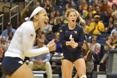2015 NCAA-Volleyball - Texas @ WVU Lizenzfreies Stockbild