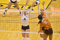 2015 NCAA-Volleyball - Texas @ WVU Stockbild