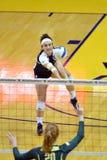 Ncaa-volleyboll 2014 - Baylor - WVU Royaltyfria Bilder