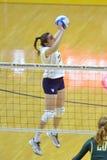 Ncaa-volleyboll 2014 - Baylor - WVU Arkivbilder