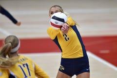 Ncaa-volleyboll 2015 - Kent State och Morgan State Arkivfoton