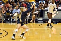 2015 NCAA-volleyboll - Texas @ West Virginia Royaltyfri Foto