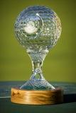 挑战高尔夫球ncgs2011 nedbank前辈战利品 免版税库存照片