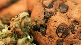 Nculinary products from marijuana. Baking cookies from cannabis close-up. stock photography