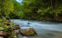 ND过滤器照片 牛奶水流量急流小河 高加索落矶山脉河在森林里 免版税库存照片
