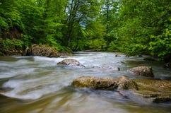 ND过滤器照片 牛奶水流量急流小河 高加索落矶山脉河在森林里 图库摄影