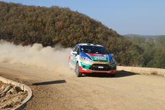 42nd Bosphorus Rally Royalty Free Stock Images
