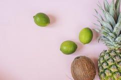 ?ndra sommaren f?r illustrationen f?r f?rgrik f?rgsammans?ttning den l?tta till vektorn Tropiska frukter - ananas, kokosnöt, lime fotografering för bildbyråer