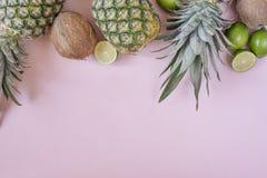 ?ndra sommaren f?r illustrationen f?r f?rgrik f?rgsammans?ttning den l?tta till vektorn Tropiska frukter - ananas, kokosnöt, lime royaltyfri bild