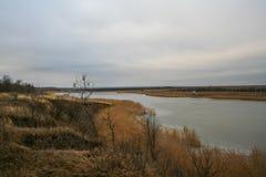 Nea пруда Стоковое фото RF