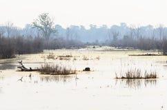 Neak Pean lake Stock Photo