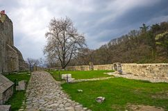 Neamt fortress ruins Royalty Free Stock Photos