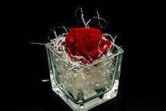 Neapel, Italien 21-April -2019 Der Kopf einer roten Rose, eingewickelt in den Dekorationen Die Rose wird in einen Glasbecher auf  stockfotos