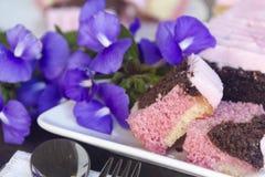 Neapolitan κέικ Στοκ εικόνα με δικαίωμα ελεύθερης χρήσης
