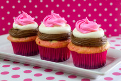 Neapolitan Cupcakes Royalty Free Stock Images