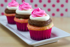 Neapolitan Cupcakes. 2 Neapolitan frosted cupcakes on square white plate with pink polka dot background Stock Images