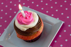 Neapolitan Cupcakes Stock Photography